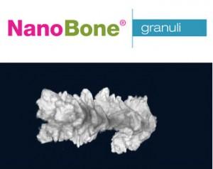 nanobone-1-tit